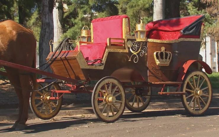 Carruagem é bem parecida com as de antigamente (Foto: Reprodução/TV TEM)