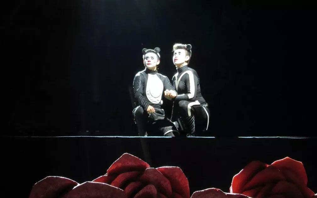 Pandas irmãos são os principais personagens do espetáculo (Foto: Alba Valéria Mendonça/ G1)