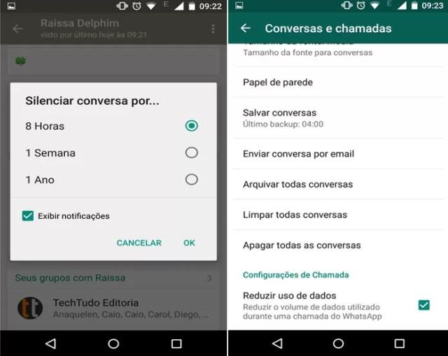 Usuários agora podem silenciar um contato, e reduzir uso dados nas chamadas de voz (Foto: Caio Bersot/Reprodução)