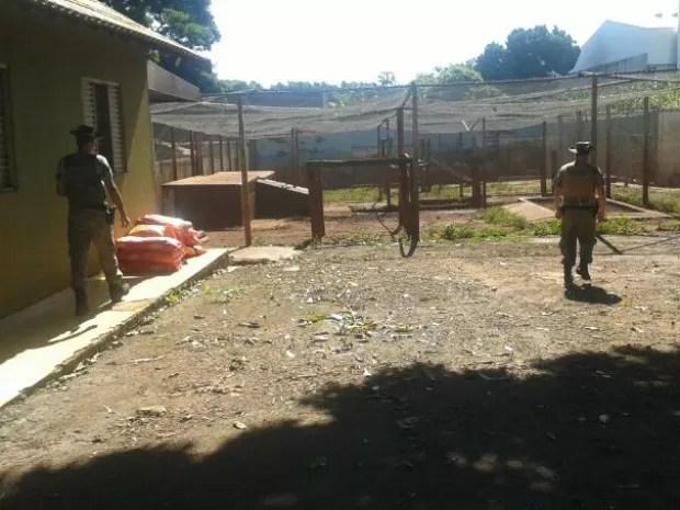 Polícia cumpre o mandado de busca e apreensão em canil de Maringá (Foto: Erick Gimenes/G1)