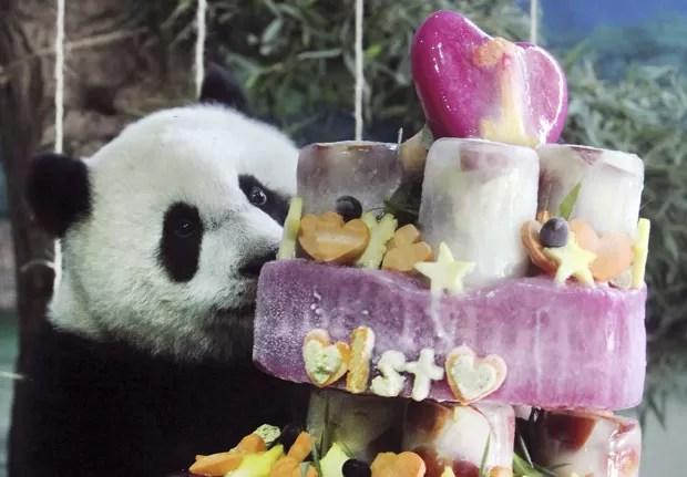 O panda Yuan Zai, primeiro a nascer em Taiwan, aproveita bolo de aniversário neste domingo (6) no zoológico de Taipei. Ele completa 1 ano (Foto: Chiang Ying-ying/AP)