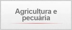 Agricultura e pecuaria (Foto: G1)