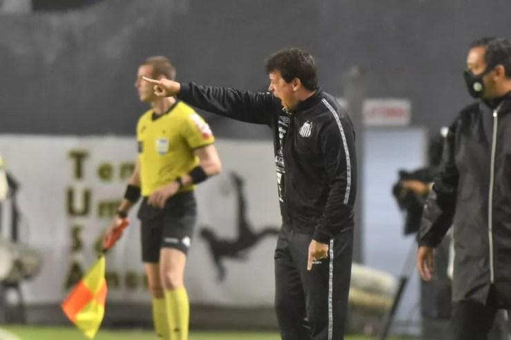 Fernando Diniz em Santos x Juventude — Foto: Ivan Storti/Santos FC