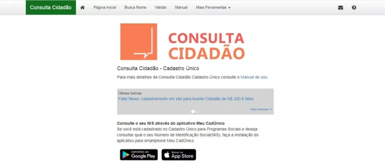 Página da Consulta Cidadão — Foto: Reprodução do Ministério da Cidadania