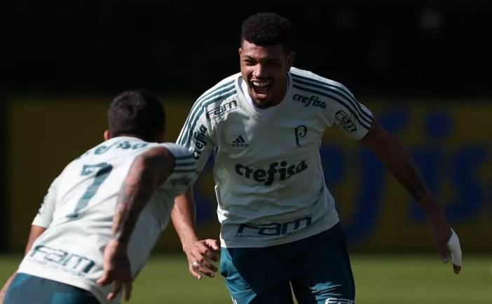 O zagueiro Juninho e o camisa 7 Dudu devem voltar ao time titular  (Foto: Cesar Greco/Ag. Palmeiras/Divulgação)