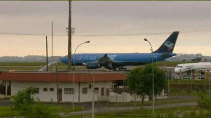 Avião com corpo do apresentador Gugu Liberato pousa no Aeroporto Internacional de Viracopos, em Campinas — Foto: Reprodução/EPTV