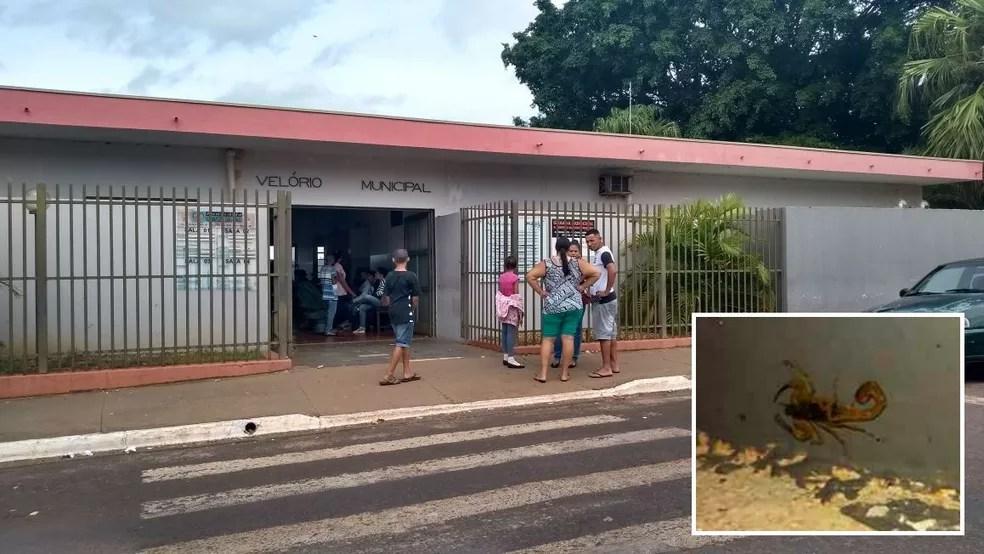 Moradores que foram ao velório do garoto de 6 anos levaram fotos de escorpiões (no detalhe) e reclamaram da infestação no bairro onde aconteceu o acidente  (Foto: César Evaristo/TV TEM)