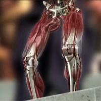 """""""Globo Repórter"""" hoje (17/05/2013): 'As infinitas possibilidades do corpo humano'"""