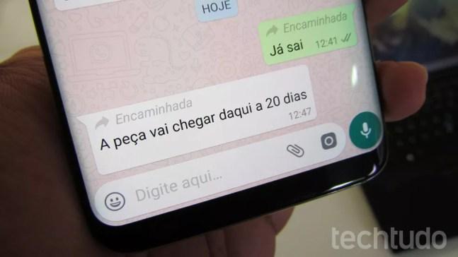 WhatsApp Beta para Android começa a mostrar quando mensagem foi encaminhada — Foto: Paulo Alves/TechTudo