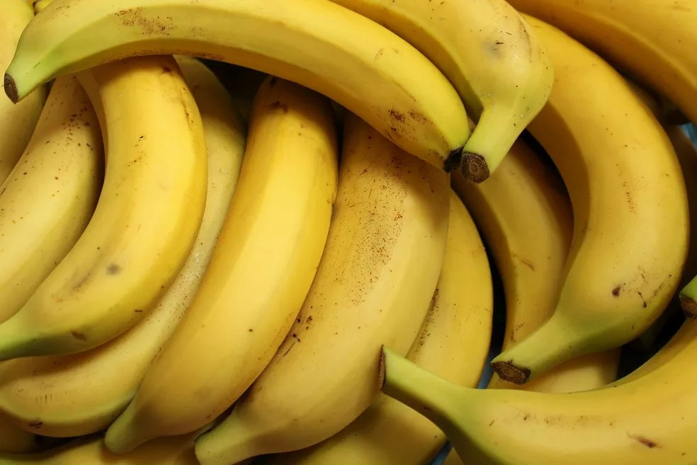 Sistema de produção de bananas se baseou fragilmente na diversidade genética limitada de uma variedade, diz especialista — Foto: _Alicja_/Pixabay