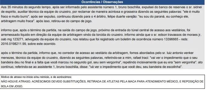 Súmula de Rafael Traci sobre ofensas de Mano Menezes (Foto: Reprodução/ CBF)