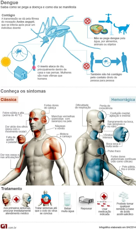 Infográfico Dengue (Foto: Arte/G1)