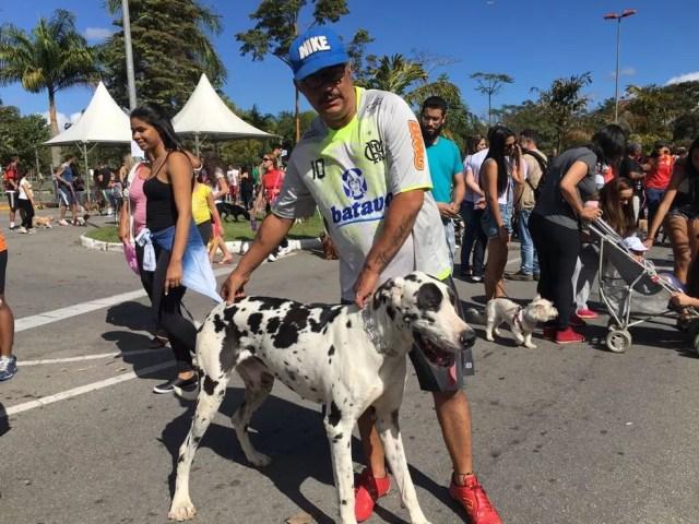 Dogue Alemão Tampinha que procurava namorada em 2016, continua solteiro em 2017 (Foto: Maria Clara Jordão/TV Rio Sul)