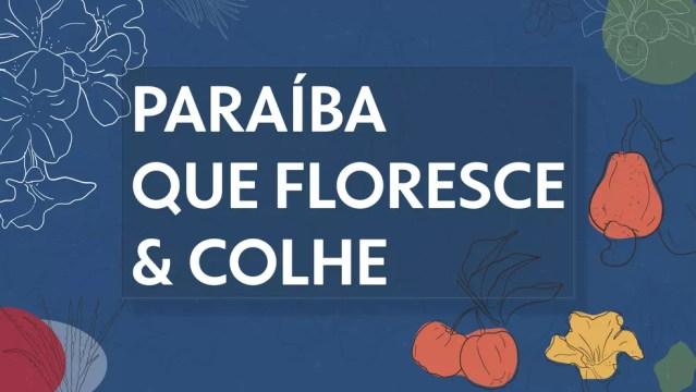 """Campanha """"Paraíba que Floresce e Colhe"""", dos veículos da Rede Paraíba de Comunicação — Foto: Rede Paraíba de Comunicação/Divulgação"""