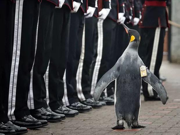 Olav foi condecorado por militares noruegueses em uma cerimônia especial em Edimburgo (Foto: Jane Barlow/PA via AP)