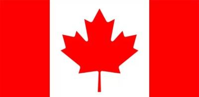 Folha, que deveria estar nas notas de dólar canadense, está presente na bandeira do país (Foto: Reprodução)
