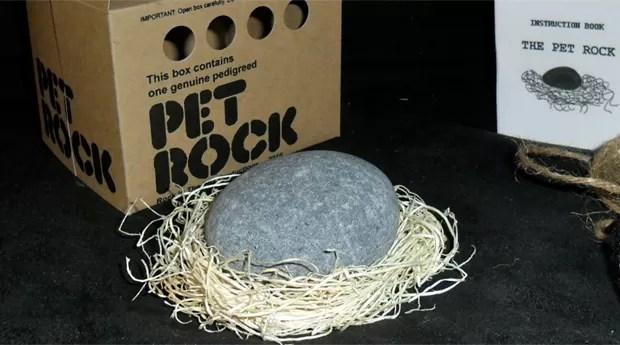 Uma pedra de estimação pode parecer uma ideia absurda...mas valeu US$ 15 milhões (Foto: Divulgação)