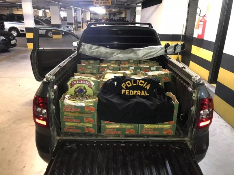 Droga iria para a Europa escondida em meio a frutas — Foto: Polícia Federal/Divulgação