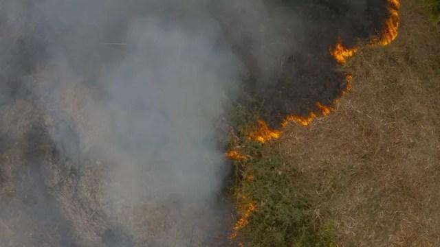 Primeiro incêndio de grande proporção no Pantanal consome vegetação nativa e área de pastagem — Foto: Ipam