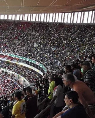 Torcida do Palmeiras Flamengo x Palmeiras (Foto: Felipe Zito)