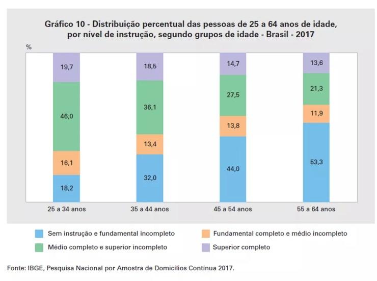 Distribuição de nível de instrução por idade em 2017 — Foto: Reprodução/IBGE