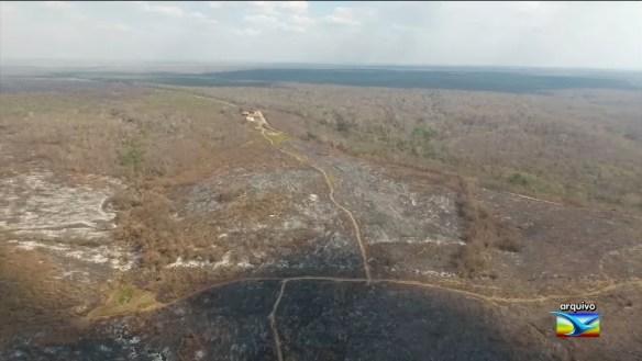 Incêndios ameaçam reservas ambientais no sul do Maranhão (Foto: Reprodução/TV Mirante)