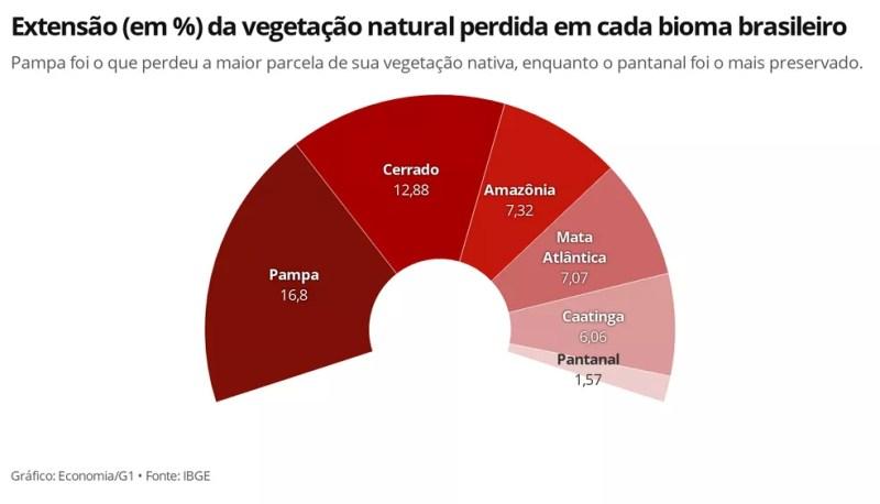 Proporcionalmente, pampa é o bioma mais devastado, enquanto o pantanal é o mais preservado — Foto: Economia/G1