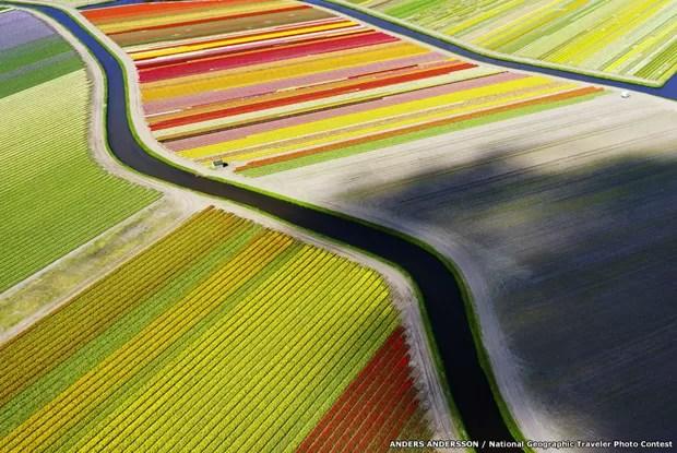 O fotógrafo Anders Andersson usou um drone para fotografar campo de tulipas na Holanda (Foto: Anders Andersson/National Goegraphic Traveler Photo Contest/BBC)