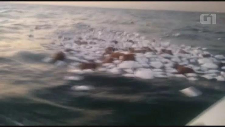 Carga caiu no mar depois do acidente (Foto: Walmir Oliveira)