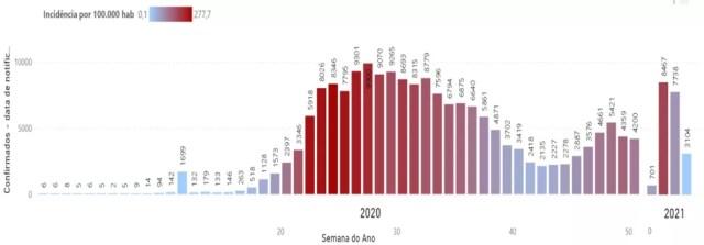 Estado registra aumento de mortes por Covid-19 — Foto: Reprodução