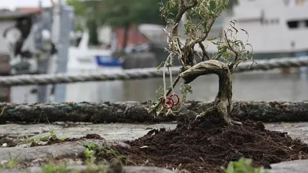 Miniaturas olímpicas  (Foto: Reprodução / Mail Online)