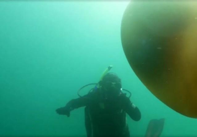 Pesquisadora é surpreendida por água viva gigante durante mergulho no Reino Unido — Foto: Reprodução/Jornal Hoje