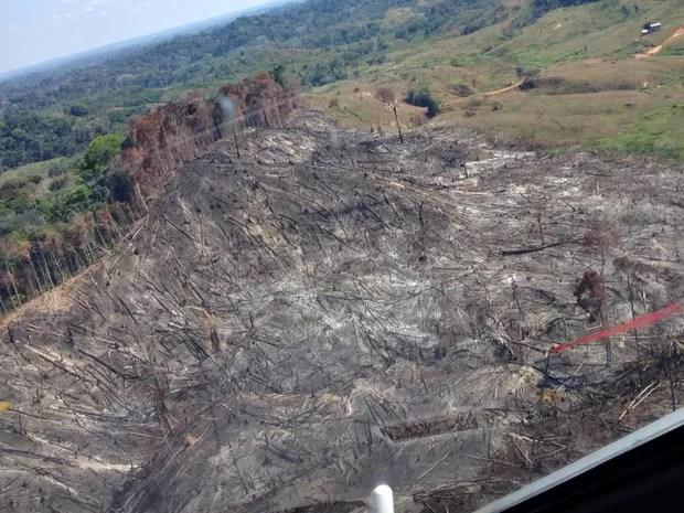 De janeiro a agosto desse ano Tarauacá registrou 102 focos de incêndio  (Foto: Divulgação/Ciopaer)
