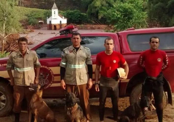Cadela era do Corpo de Bombeiros do ES e atuou em buscas nas tragédias de Brumadinho e Mariana — Foto: Divulgação/Corpo de Bombeiros
