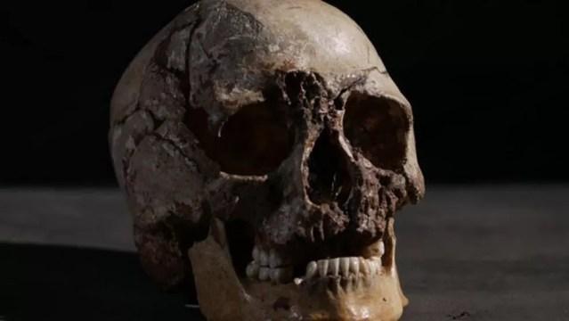 Embora os esqueletos em exposição nos museus possam dar a impressão contrária, os ossos sob a nossa pele estão muito vivos — Foto: BBC