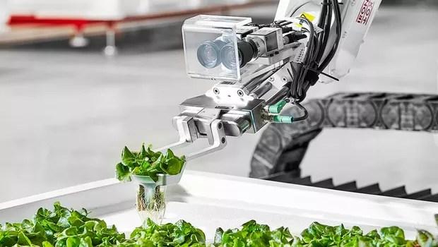 Instalações da Iron Ox (Foto: Reprodução/Iron Ox)