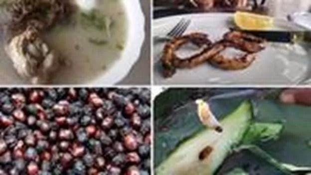 Alguns pratos exóticos da gastronomia da América Latina (Foto: BBC)
