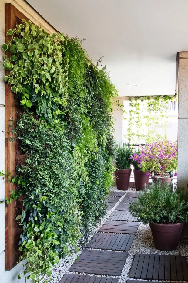 Jardim vertical. Projeto do paisagista Roberto Riscala (Foto: Celia Weiss / Editora Globo)
