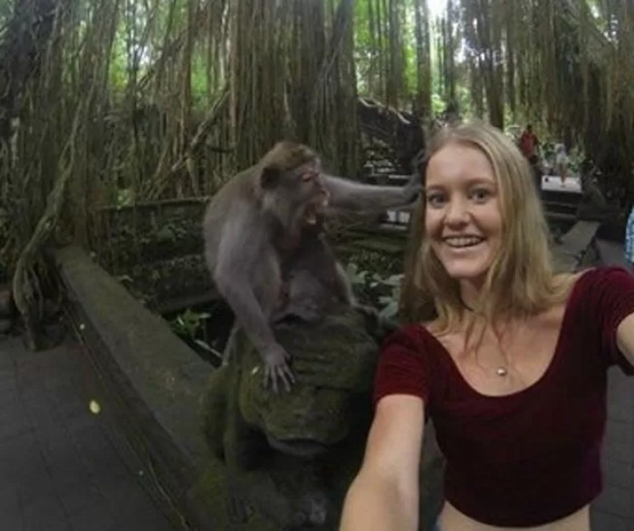 Jovem se deu mal ao tentar tirar selfie ao lado de macaco (Foto: Reprodução/Reddit/ThatGuy1331)