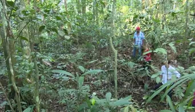 Um dos geoglifos achados pelos pesquisadores fica dentro de área de mata fechada na Reserva Extrativista Chico Mendes (Foto: Reprodução/Rede Amazônica Acre)