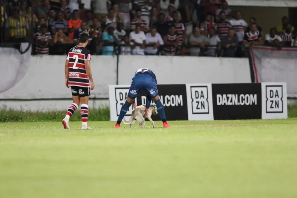 Coube a Anderson a responsabilidade de agarrar o animal — Foto: Aldo Carneiro / Pernambuco Press
