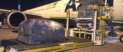 Azul transportou 'kit intubação' para 25 estados na primeira série de voos — Foto: Azul / Arquivo Pessoal