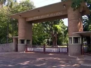 Portão da Esalq, campus da USP em Piracicaba (Foto: Reprodução/EPTV)