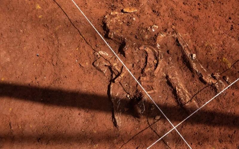 Restos mortais da época da escravidão encontrados em terreno na Liberdade — Foto: Marcelo Brandt/G1