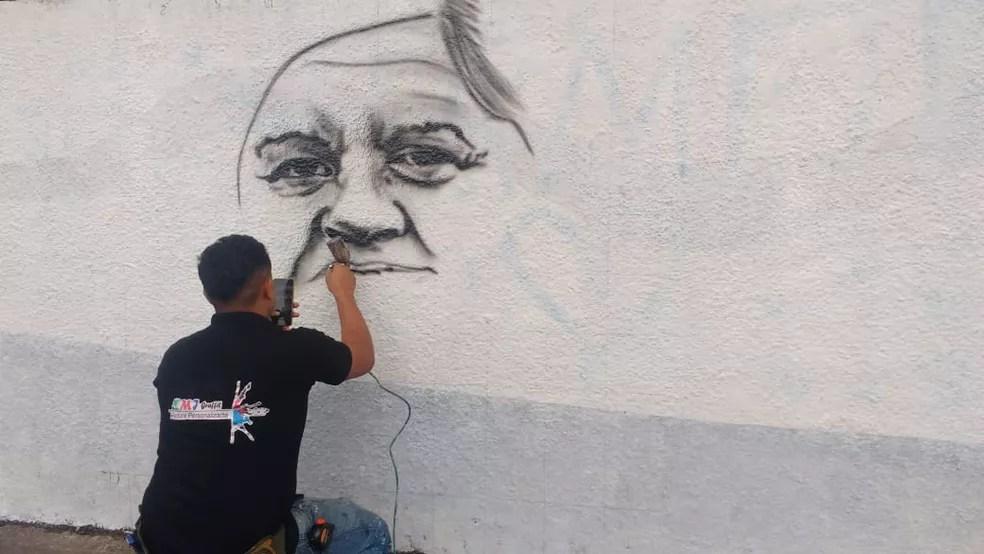 Pintura de Marilena Ferreira Umezu foi a primeira a ser feita por artista plástico no muro da Escola Raul Brasil após massacre em Suzano — Foto: Maiara Barbosa/G1
