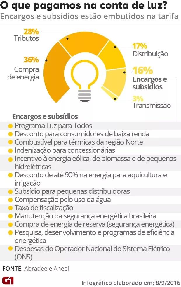 Encargos e Subsídios na conta de luz (Foto: Aneel e Abradee)