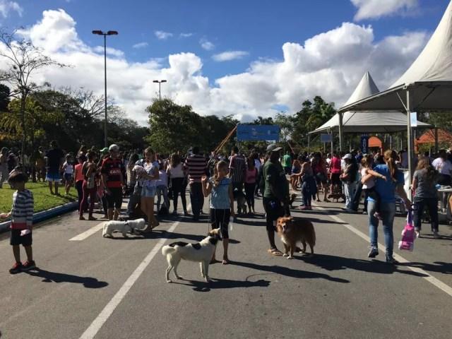 Caminhada do Amicão em Resende (Foto: Maria Clara Jordão/TV Rio Sul)