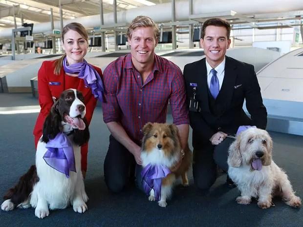 Cães e gatos também ganharão milhas pela Virgin Australia (Foto: Virgin Australia/Divulgação)