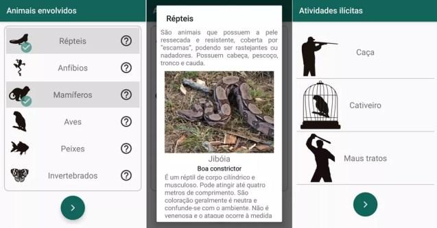 Aplicativo desenvolvido na UFPI facilita a denúncia de crimes contra animais silvestres no Piauí — Foto: Arquivo Pessoal/ Wedson Medeiros