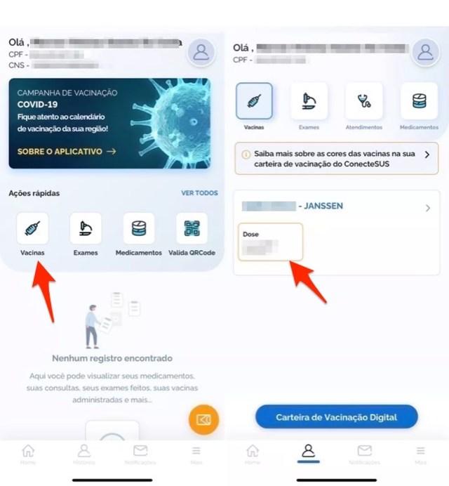 Ação para acessar informações sobre vacinação no app Conecte SUS — Foto: Reprodução/Marvin Costa